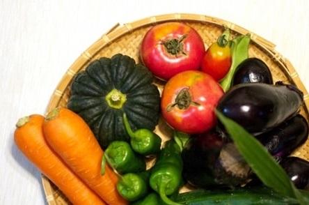 夏バテに効果のある夏野菜