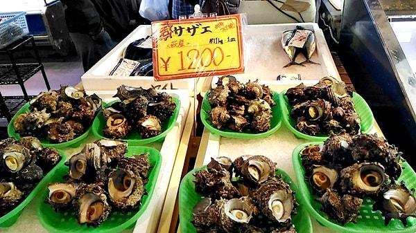 萩市しーまーとの魚介類のおみやげ萩市しーまーとのサザエ
