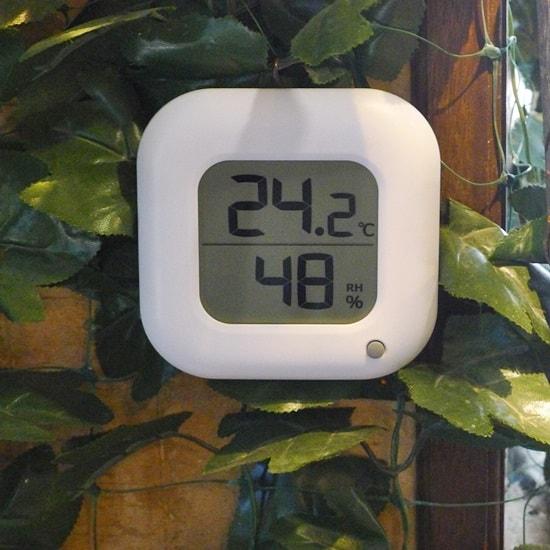 厳島ふくろうの森の中の温度と湿度