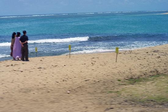 オアフ島ぐるっと一周ツアーのサンセットビーチ