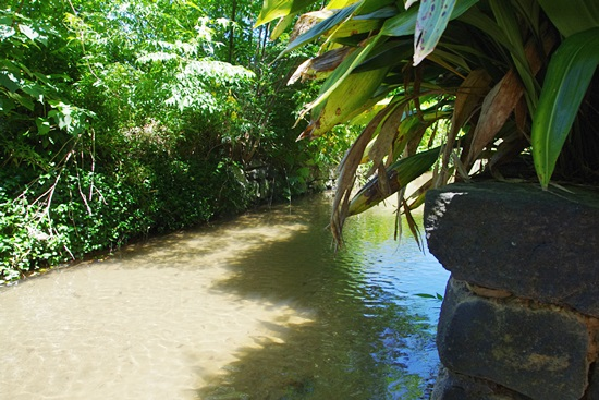 カフェギャラリー藍場川の家の敷地内を流れる藍場川