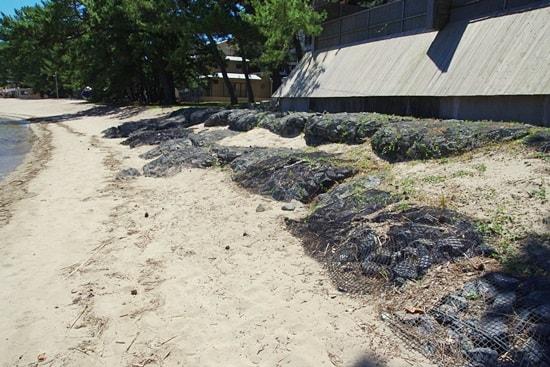 菊ヶ浜の土塁