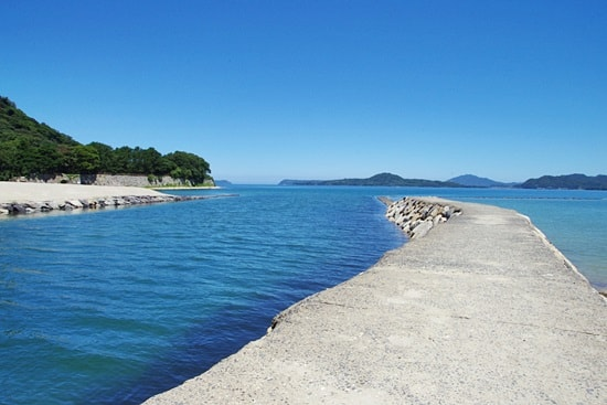 菊ヶ浜の堤防を歩くとテトラに続く