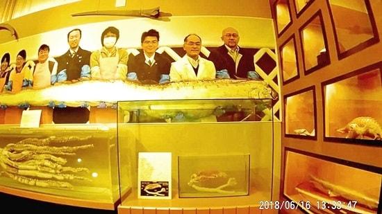 萩博物館の深海魚展示