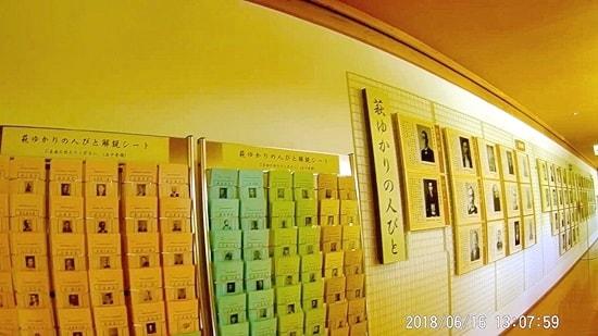 萩博物館の無料資料
