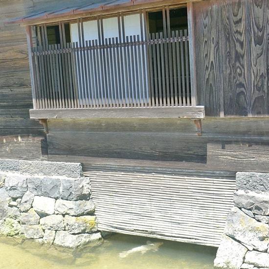 湯浅家の取水口